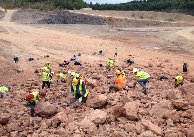 Haaientand van 4 miljoen jaar oud te zien tijdens Geologiebeurs Berghem